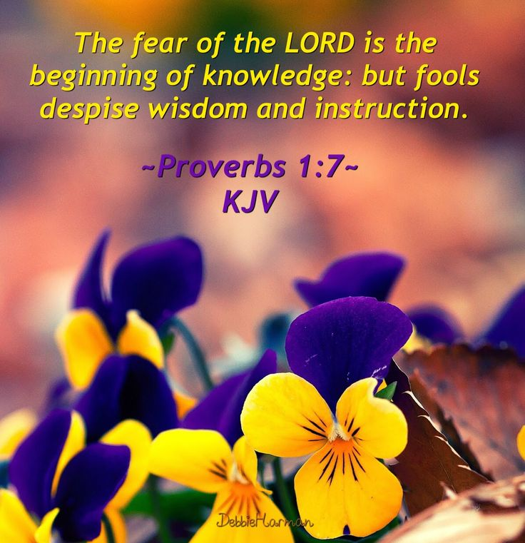 fear in the lord of the Synonyms for fear at thesauruscom with free online thesaurus, antonyms, and definitions find descriptive alternatives for fear.