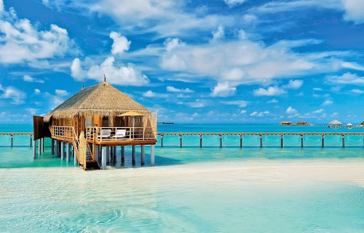 Okyanusun ortasında, lüks ve sadeliğin mükemmel uyumu: Constance Moofushi Maldives | Jules Verne