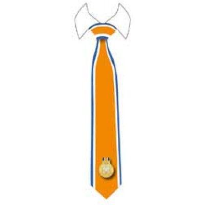 Oranje stropdas met blauwe lijnen. http://www.feestwinkel.nl/stropdas-lintje-oranje.html