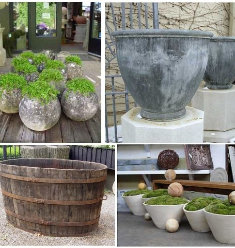 Cement Container Planters : Best images about container gardening ideas on