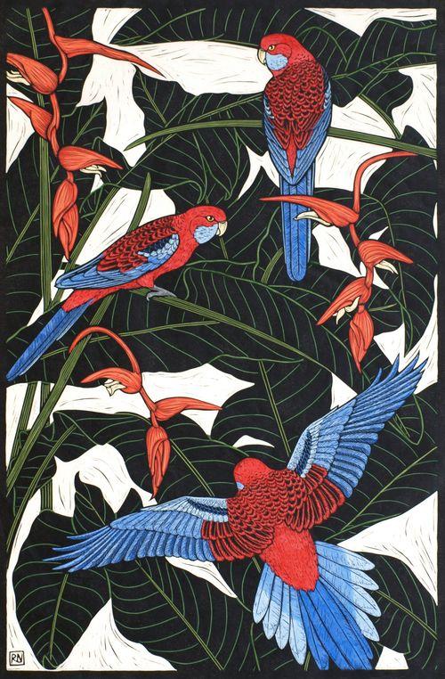 CRIMSON ROSELLA 74.5 X 49 CM    EDITION OF 50 HAND COLOURED LINOCUT ON HANDMADE JAPANESE PAPER $1,250