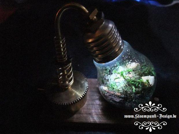 DIY How to make a Desklamp Terrarium using Lightbulb and Solar LED! Better than the regular Lightbulb Terrarium but involves just a little more work.
