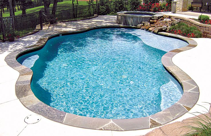 Pool Tanning Ledge built by Blue Haven Pools