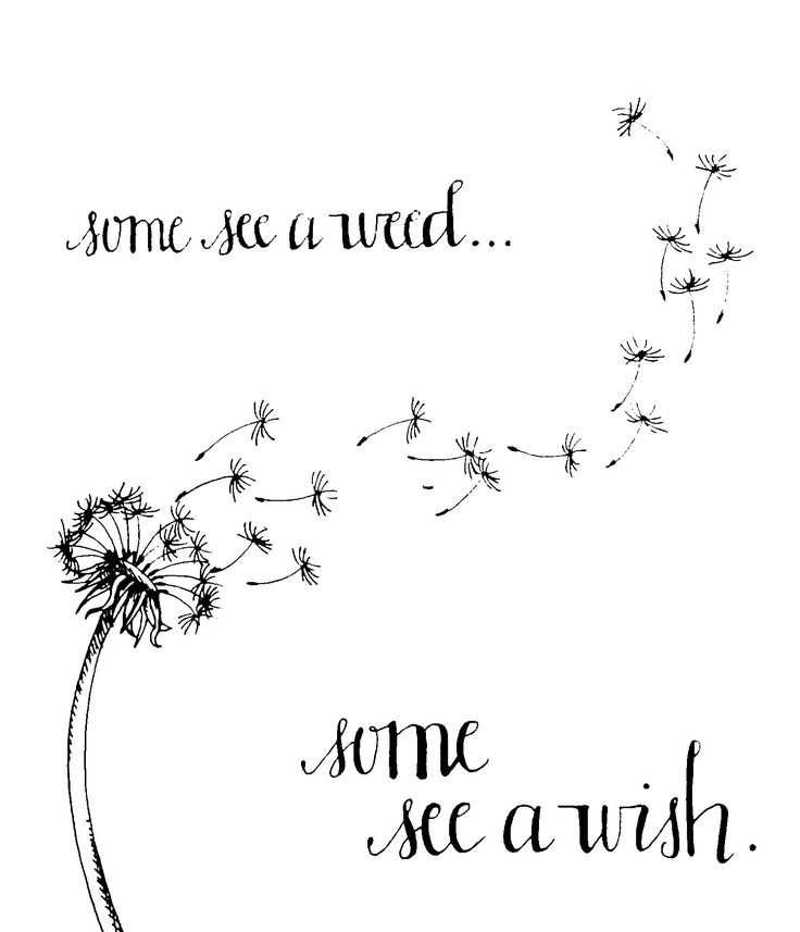 Some see a weed...some see a wish. | Tattoos | Pinterest