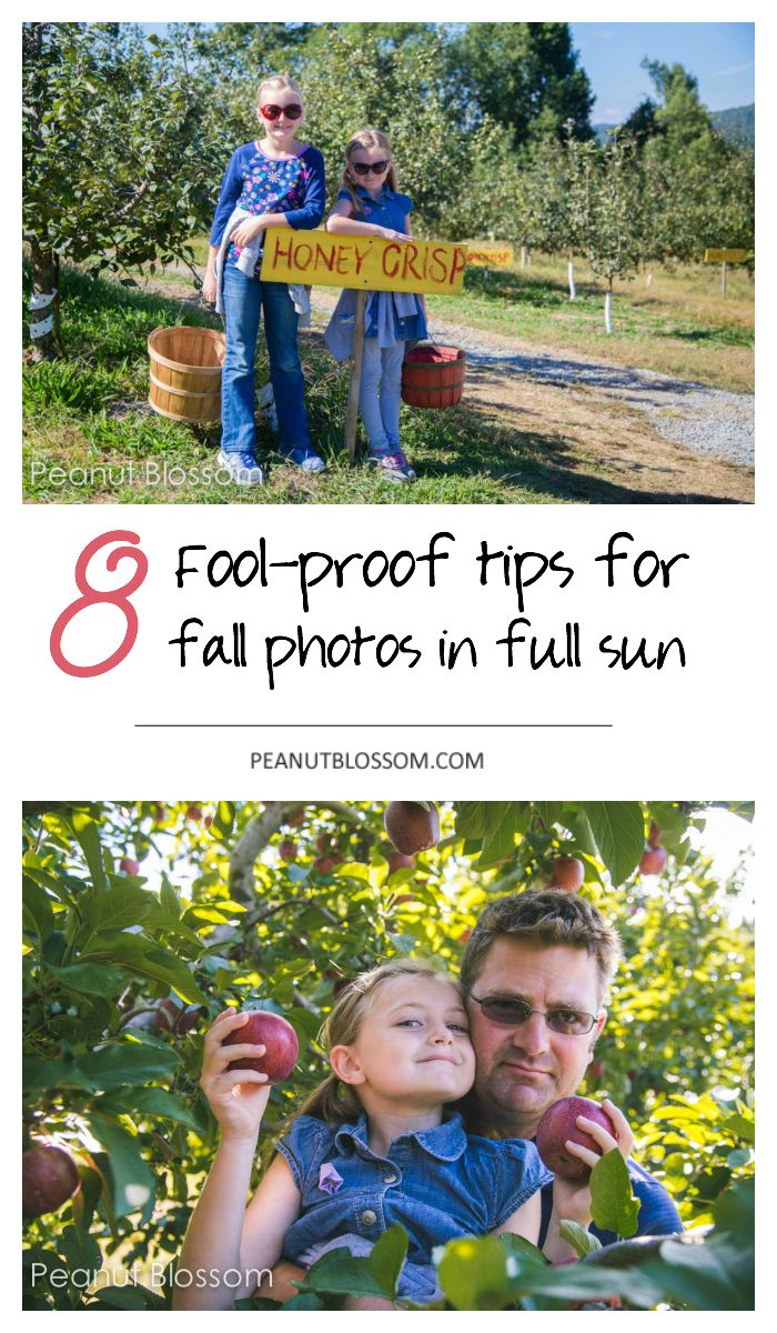 8 fool proof photography tips for fall photos in full sun. This photography ideas list is great for learning how to take better pictures of your kids at outdoor events like the zoo, apple picking, visit to the pumpkin patch, and more. Love that tip about open shade and how to find a good background for your picture!