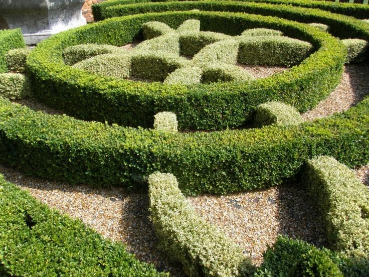 88 best formal gardening images on pinterest gardens for English knot garden designs