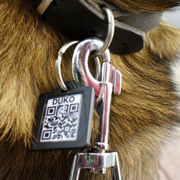 Qr dog tag diy and crafts pictures and pictures of for Qr code dog tag