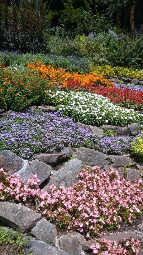 Giardino fiorito 2