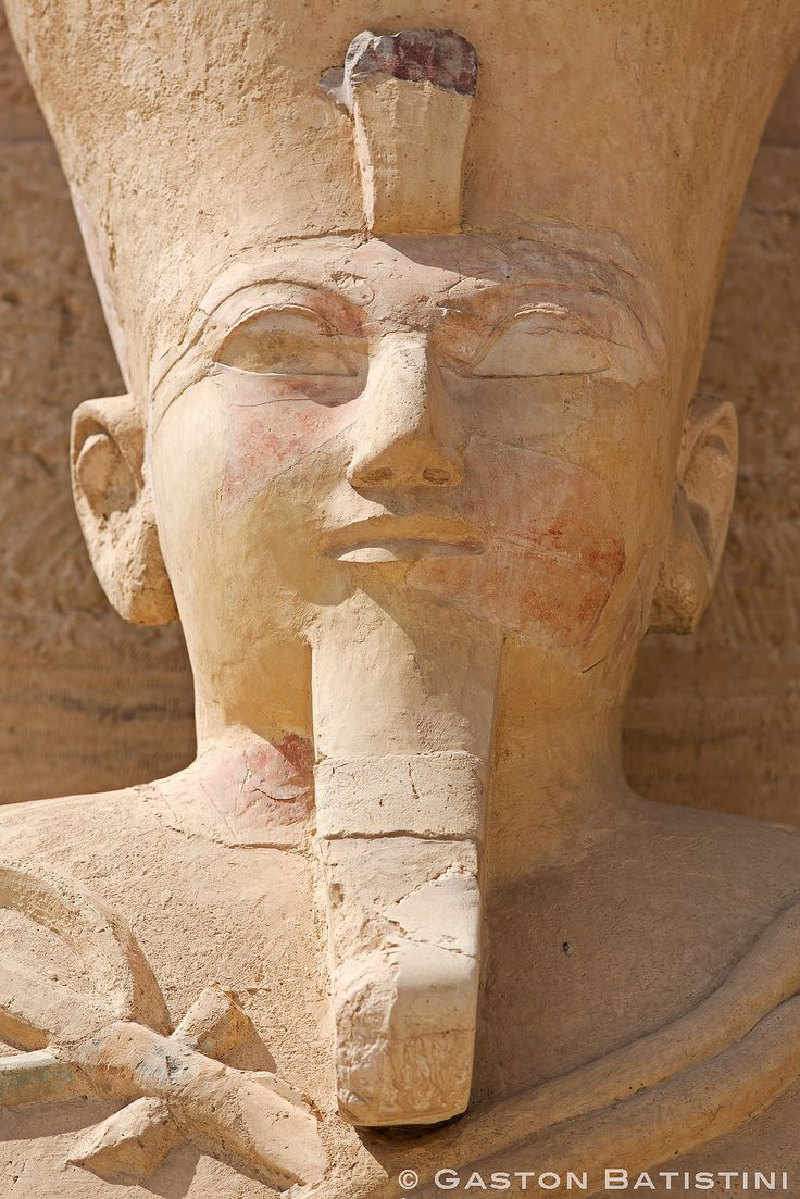 the life and history of hatshepsut Among the many rulers of ancient egypt was the queen hatshepsut who reigned with thutmose iii read on if you want to know more about her life  history by having .