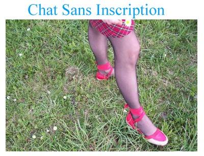 Chat gratuit sans inscription ou vous n'avez pas besoin de vous enregistrer si vous voulez dialoguer en ligne avec quelqu'un.