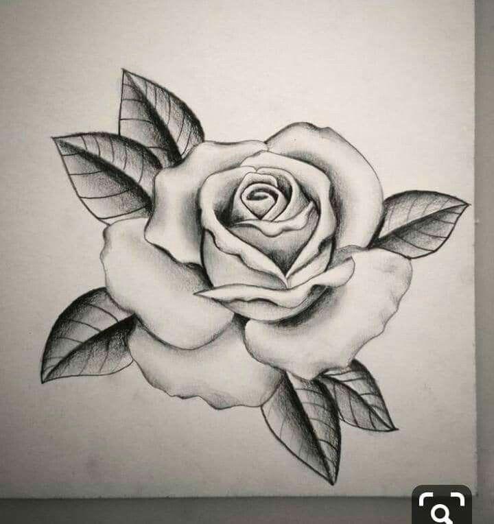Pin De Henryk Sienkiewicz Em Grafika Szkice Desenho De Rosas