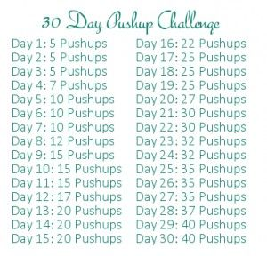 30 Day Pushup Challenge! I suck at pushups so I may have to try this...