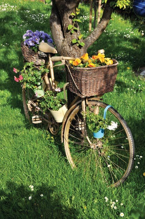 An old chair and a bike basket get a second life when planted with colorful flowers.