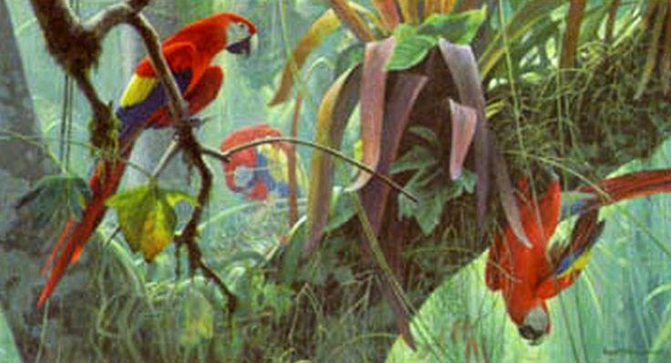 pinturas-de-aves-en-cuadros-decorativos-al-oleo