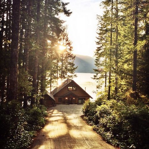 Cabin by the lake, surrounded by trees! Doesn't get much better than that!