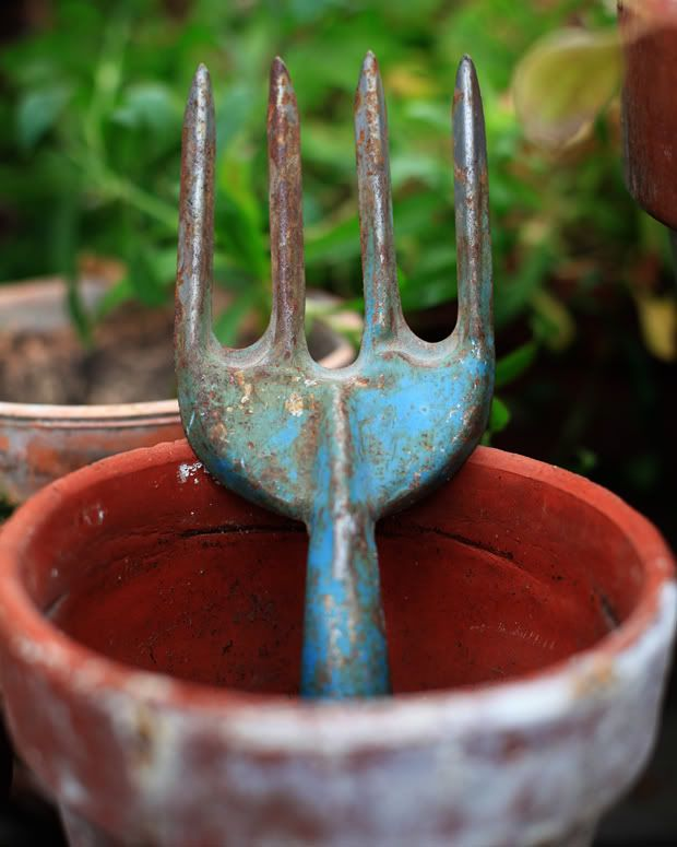 .: Blueberries Food, Farms, Blueberries Muffins, Old Gardens Tools, Cottages, Gardens Forks, Old Garden Tools, Clay Pots, Rusty Gardens
