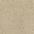 Carpet Sample - Ashcraft II - Color Canvas Cloth Texture 8 in. x 8 in.