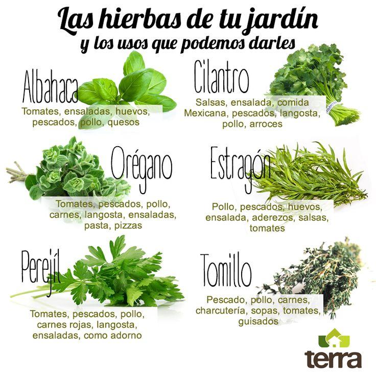 Aprende a sacarle provecho a las plantas de tu jardín, incluyéndolas en las preparaciones culinarias de cada día. ¡Serán imprescindibles!  #TipsTerra Conoce más sobre nosotrosen www.terra.net.co #ServiciosTerraPyJ