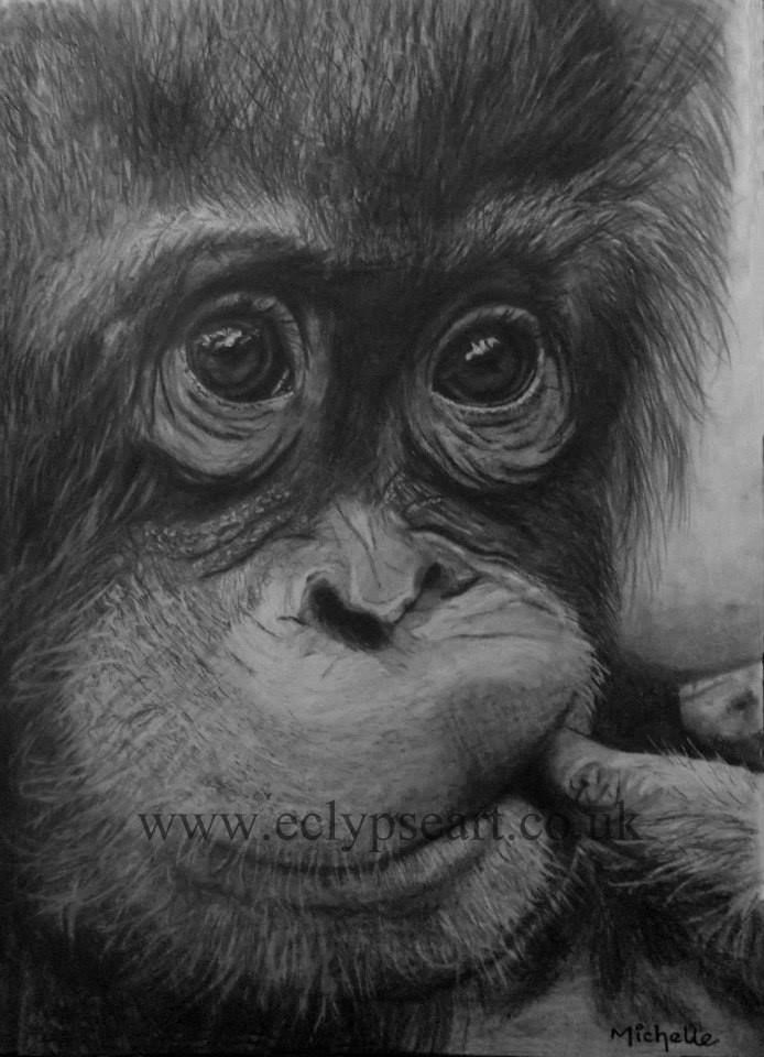 Another fantastic Graphite pencil drawing from http://www.eclypseart.co.uk/