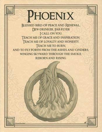 Phoenix ~ Animal prayer