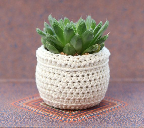 Plant Pot white crochet by BerriesForBella on Etsy