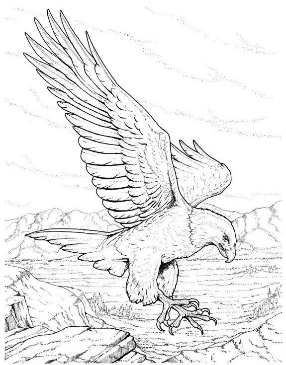 coloring pages eagle with flag - photo#17