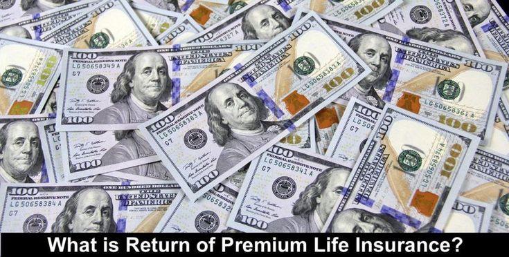 Return of Premium Life Insurance in 2020   100 dollar bill ...