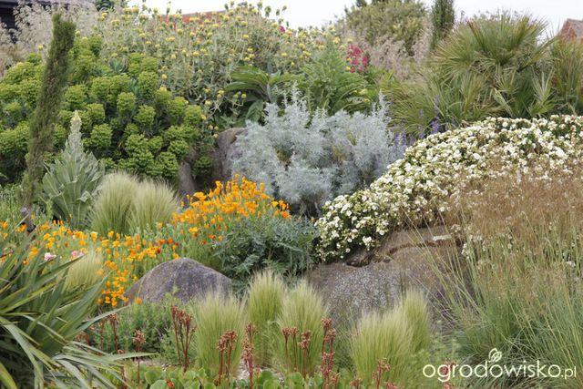 Galeria zdjęć - Ogrody naturalistyczne - Ogrodowisko