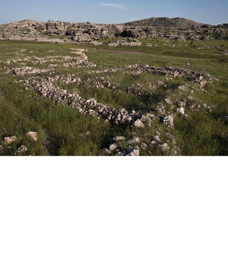Ergani Çayönü- İlk üretimciliğe geçiş evresi olan Neolitik Çağ'ın Türkiye'deki önemli örneklerinden biri olan Çayönü, mimarisi ile dikkat çektiği gibi ilk olarak buğdayın tarıma alındığı ve köpeğin evcilleştirildiği yer olarak da önem taşır.