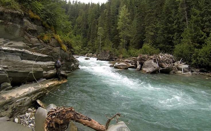 Nature doesn't always co-operate...that's why you need a switch rod! Loop Cross S1 Switch Bryce Lamont, BC Prostaff