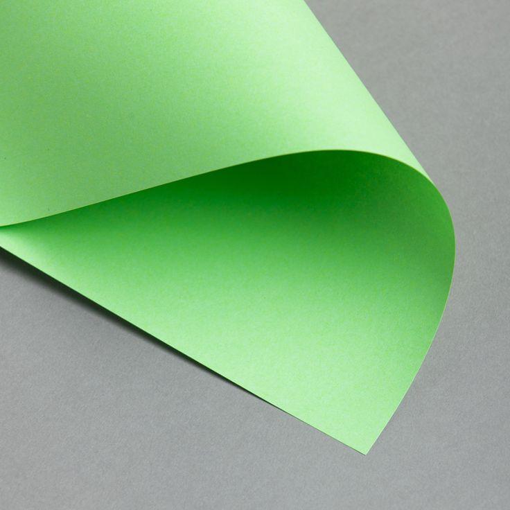 EVERCOLOR Intensiv 80 g DIN A4 | Lindgrün