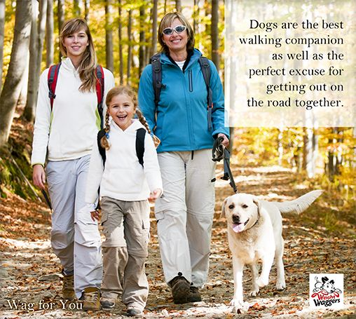 Weight Waggers - walking your dog has many benefits for you too. Check them out on our Wag for You page of our not-for-profit website weightwaggers.org #dog #walk #health