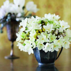 28 festive winter arrangements | Paperwhite narcissus | Sunset.com
