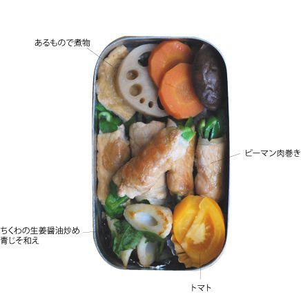 Everything on Rice Bento - 色々のっけ弁当