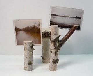 eco idea for photos