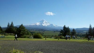 Mt. Hood Organic Farms