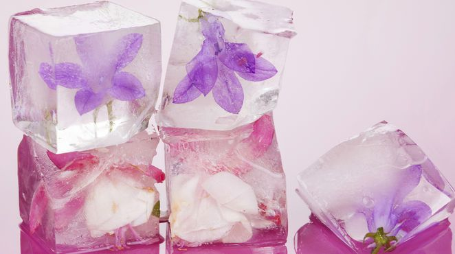 Diese eisigen Schönheiten machen selbst ein Glas Wasser zum Hingucker: So gelingen Ihnen ganz leicht super-schöne Eiswürfel für jeden Drink
