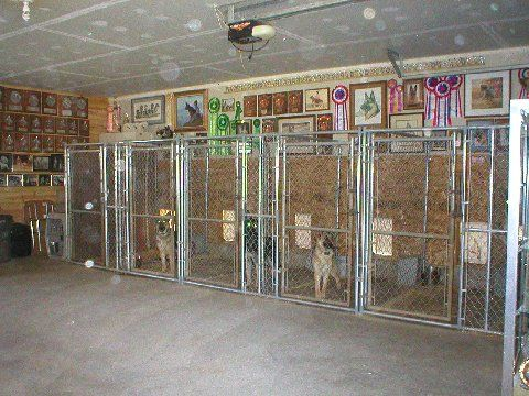 22 best images about dog kennels on pinterest for dogs for Dog kennel in garage ideas