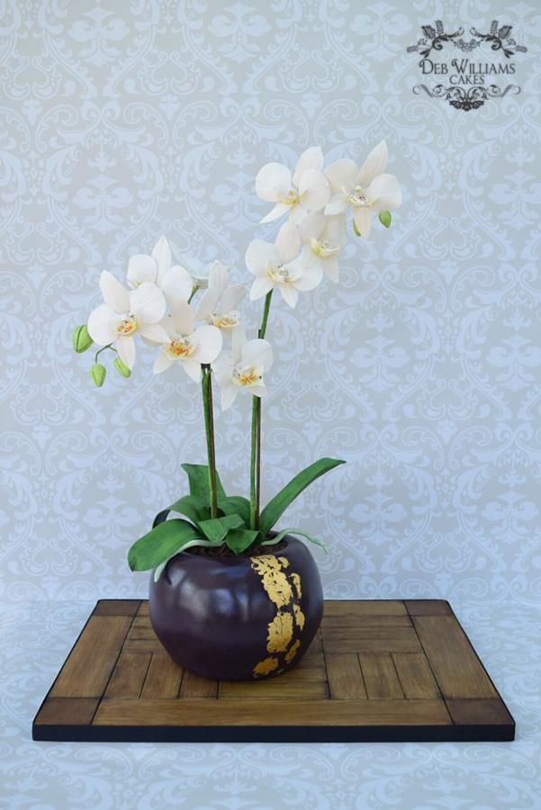 Potted Phalaenopsis orchid cake by Deb Williams Cakes