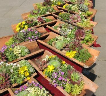 Wurzenziegel Angebot auf einer Gartenveranstaltung