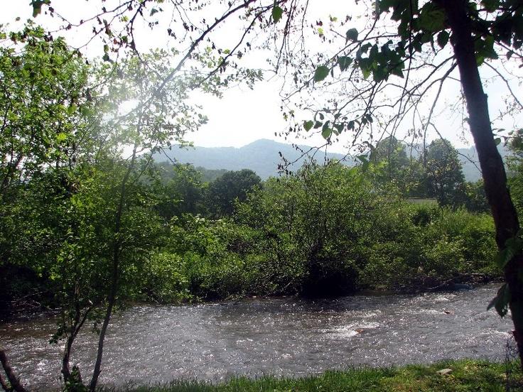 Jonathan Creek runs down the Back Beautiful