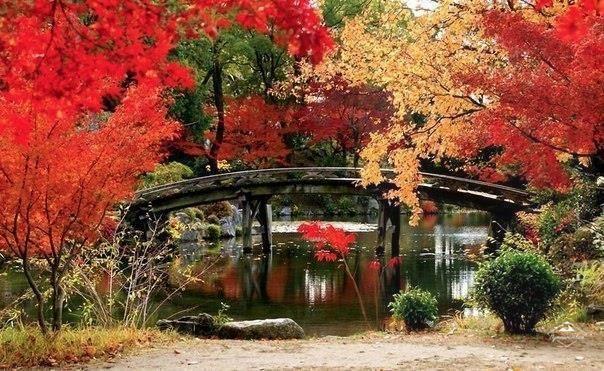 В парке Киото, Япония
