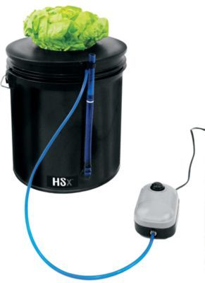 Whether you have developed an impressive hydroponics green thumb or you are a novice to this type of horticulture, the Hydroponics Starter Kit will make a great addition to your gardening tools.