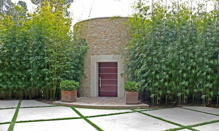 haie de bambous jardin pinterest jardins maison et. Black Bedroom Furniture Sets. Home Design Ideas