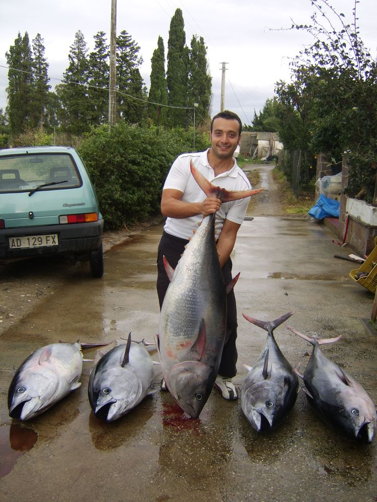 Daniele and his catch of huge Tunas!