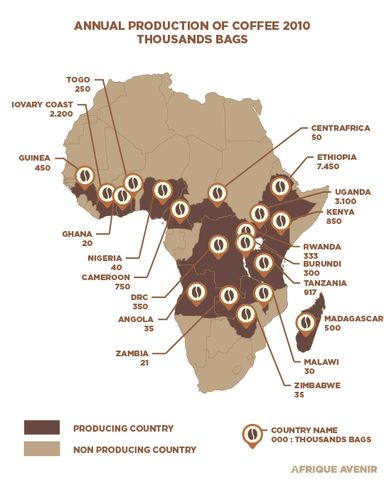 African Coffee Producers - Flatirons Coffee Roasters