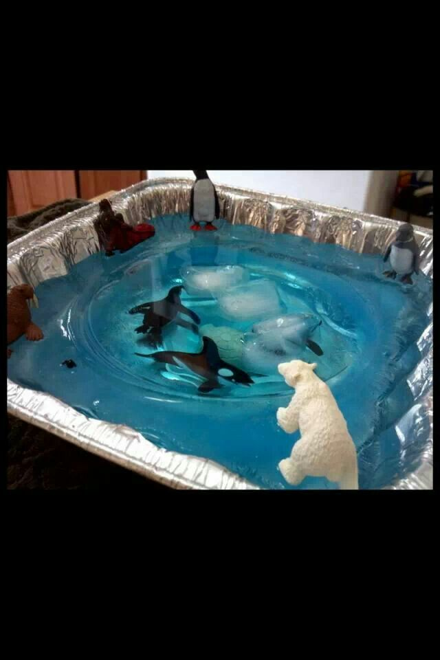 Arctic play, sorry not sure who to thank for this idea. Fill the big tray with blue tinted water, sit a bowl or tub in the middle, weighted down if need be. Place outside or in freezer (whichever is colder).  Add your animals and water in the middle, add some ice cubes to float about in the middle.