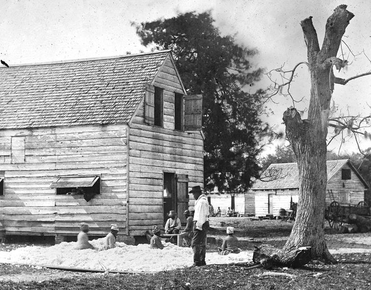 African Americans prepare cotton for a cotton gin on Smith's plantation, Port Royal Island, South Carolina, in 1862.