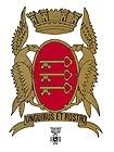 Le 11 novembre 1948, Avignon a reçu une citation à l'ordre de la division. Cette distinction comporte l'attribution de la croix de guerre avec étoile d'argent. Depuis, cette décoration figure sur les armoiries de la Ville.