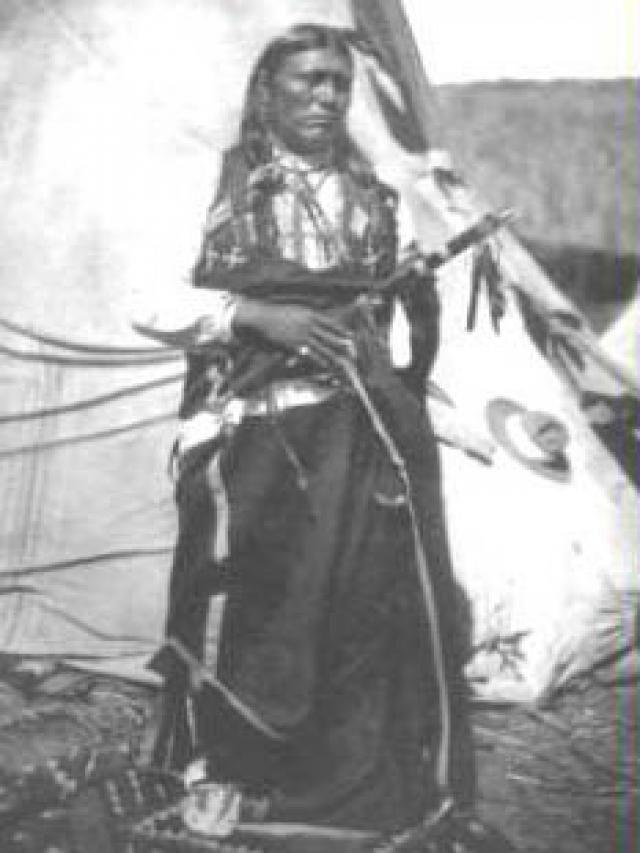 """TECUMSEH (Estrella Fugaz)  (Shawne 1768-1813)  pueblo  """"Ninguna tribu puede vender la tierra. ¿No lo hizo todo el Gran Espíritu para el uso de sus hijos? La única salida es que los piel rojas se unan para tener un derecho común e igual en la tierra, como siempre ha sido, porque no se dividió nunca."""""""